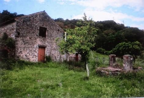 IP0480_mvc-001f.jpg Altes Bauernhaus  in golfo di Policastro zu renovieren