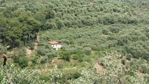 PI0363_mvc-001f.jpg Ferienhaus mit Grundstück in Ligurien