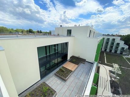 Blick von oben Schickes Dachterrassen-Apartment! Für Studenten/Azubis *ERSTBEZUG*