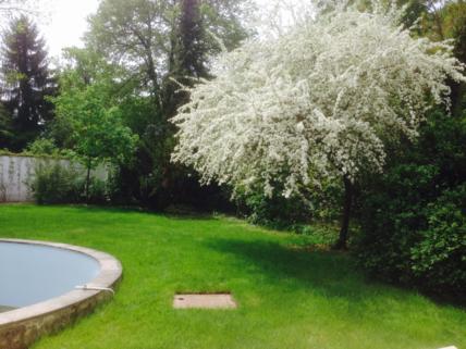 Garten großzügiges Einfamilienhaus mit Garten und Pool in Krailling zu vermieten